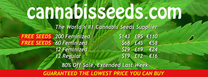 cannabis-seeds-banner-5