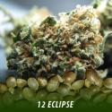 cannabis-seeds-ECLIPSE