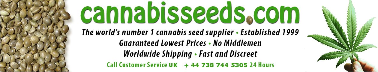 Cannabis Seeds for sale, Feminized and regular