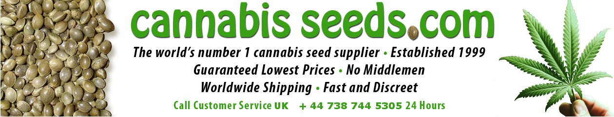 The world's number 1 cannabis seed supplier. Established 1999. Guaranteed Lowest Prices. No Middlemen. Worldwide Shipping. Fast and Discreet!